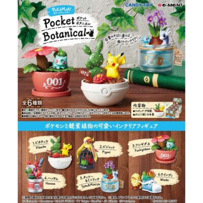 Pokémon Pocket Botanical