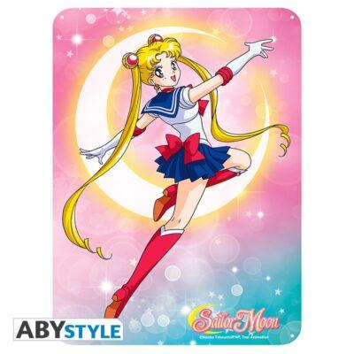 Sailor Moon Metal Plate