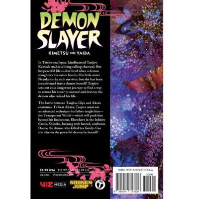 Demon Slayer Kimetsu no Yaiba Vol. 18